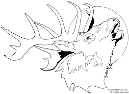 elk coloring page cmseal clipart image 29728
