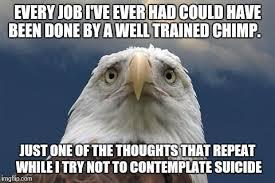 America Eagle Meme - sad american eagle meme generator imgflip