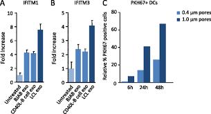 si e social lcl sensing of latent ebv infection through exosomal transfer of 5