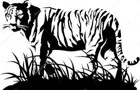 tiger black and white vector stock vector tratatushki 3601355