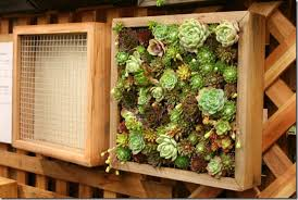 plain design how to build a living wall marvellous ideas how to
