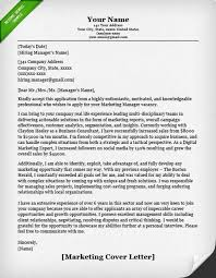 Best 20 Cover Letters Ideas On Pinterest Cover Letter Example by Expert Cover Letters