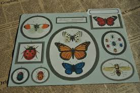 cavallini file folders cavallini co butterflies and insects file folder junk journal