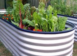 Veg Garden Ideas Raised Bed Vegetable Garden End Of Season The Garden Inspirations