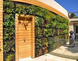 living garden walls and planters