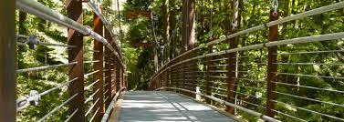 Botanical Garden Bellevue Bellevue Botanical Garden Suspension Bridge