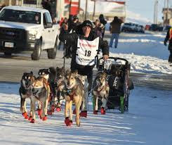 4 time iditarod champ dallas seavey is musher whose dogs failed
