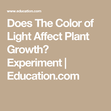 how does light affect plant growth does the color of light affect plant growth plant growth science