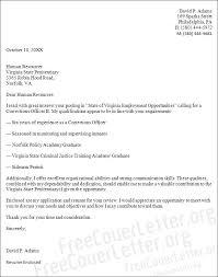 Resume Australia Template Cover Letter Template Australia Software Engineer Curriculum Vitae
