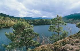 glen affric estate pippa middleton will be lady of this 10 000 acre scottish estate