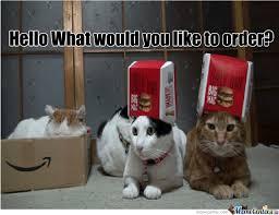 Working Cat Meme - cats working in mcdonalds by mrmygro meme center