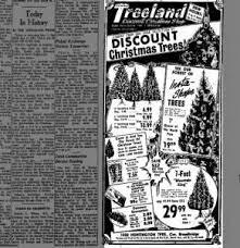 best 25 discount trees ideas on burlap