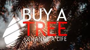 buy a tree change a augusta home