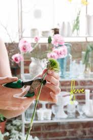 how to make boutonnieres how to make a boutonnière a practical wedding a practical