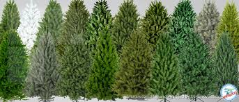 in america artificial trees and more us