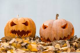 pumpkin pic jpg