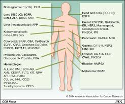 evidence of clinical utility an unmet need in molecular