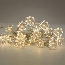 buy warm white solar powered led lights with decorative