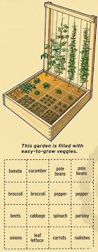 Raised Vegetable Garden Layout Small Vegetable Garden Layout For My 4x4 Raised Beds I