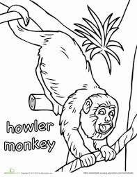 howler monkey worksheet education