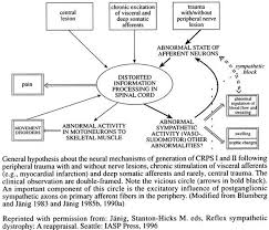 Visceral Somatic Reflex Spinal Pain Syndromes Nociceptive Neuropathic And Psychologic