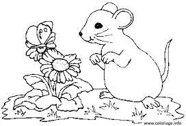 coloriage fleurs et souris dessin