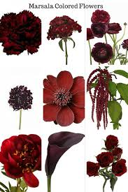burgundy flowers marsala colored flowers burgundy cranberry maroon