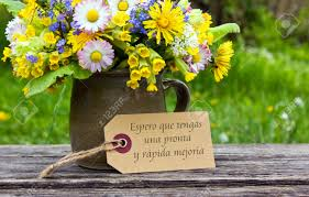Get Well Soon Flowers Spanish Get Well Card With Spring Flowers Stock Photo Picture And