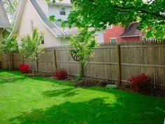 Fence Ideas For Backyard by 40 Fabulous Landscaping Ideas For Backyards U0026 Front Yards