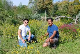 native plant society of texas medina garden nursery
