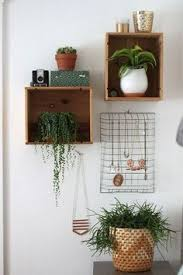 corner hanging plants for the bedroom reading nook apartment