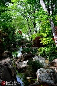 Botanical Gardens Dallas by Dallas Botanical Gardens 2 4 10 2015 Donald Allen Photography