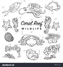 tropical coral reef inhabitants sea creatures stock vector