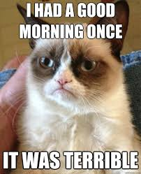 Good Morning Cat Meme - i had a good morning once cat meme cat planet cat planet