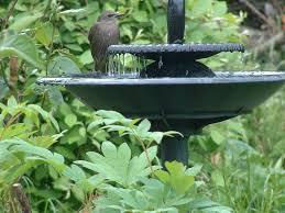 for bird bath