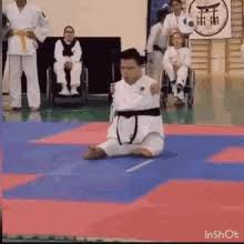 imagenes gif karate karate girl kick gifs tenor