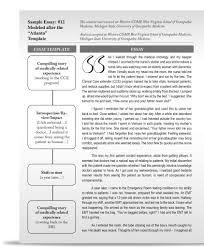 sample essay writing pdf myself essay writing pdf docoments ojazlink description of yourself essay descriptive a person