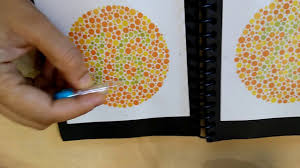 Color Blind Plate Test I Am Color Blind I Can Read Ishihara Test Plates Now See My Video