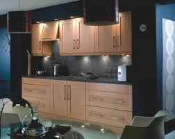 Mobile Home Kitchen Cabinet Doors by How To Replace Cabinet Doors Only Best Home Furniture Decoration
