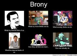Bronies Meme - brony perception vs fact other fan works mlp forums