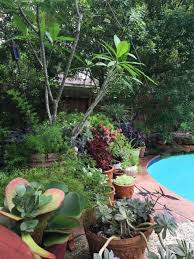 The Home Decor Superstore Must See The Corner Of My Backyard Gets A Design Refresh From U0027at