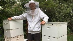 Backyard Beehive Hobby To Multi Million Dollar Industry Backyard Beehives Leading
