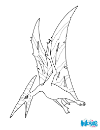 pteranodon coloring pages hellokids com