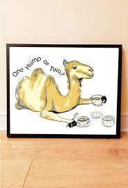 433 best camel images on pinterest camels animals and egypt
