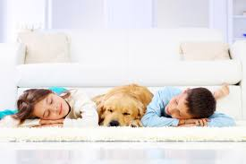Martin Carpet Cleaning Cleaning Russell Martin Carpet And Rugs