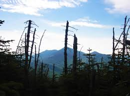 Table Top Mountain by Table Top Mountain An Adirondack Day Hike Towns And Trails