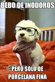 Memes En Espa Ol - mundo memes en español mantenerlo sale caro i http www diverint