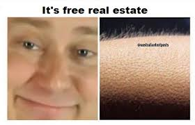 Goosebumps Meme - it s free real estate whisper in ear goosebumps know your meme