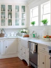 inside kitchen cabinets ideas gray paint inside kitchen cabinets design ideas home devotee