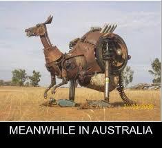Australia Meme - meanwhile in australia memes and comics